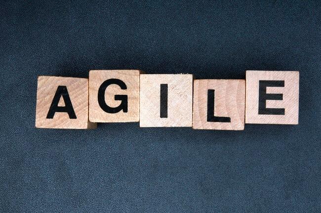 Agile BPM vs Custom Coding   BP Logix